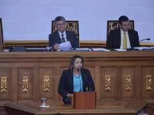 Yajaira Castro de Forero: Venezuela exige Paz y Reconciliación