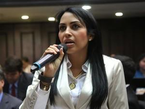 Delsa Solórzano: La ley de Amnistía incluye solo a los presos políticos no <br> amaña a delincuentes